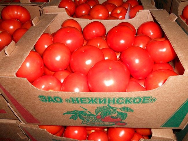 «Болдуин»-томат-фото