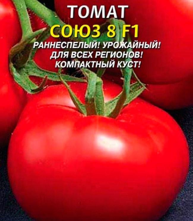 «Союз-8-F1»-томат-фото