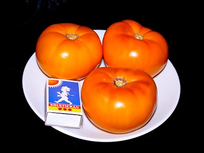 помидоры-хурма-на-тарелке-фото