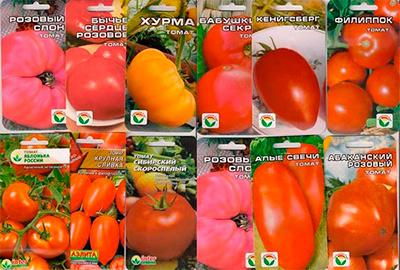 семена-помидор-фото