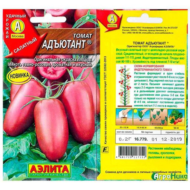 томат-«Адъютант»-фото