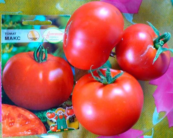 томат-макс-фото