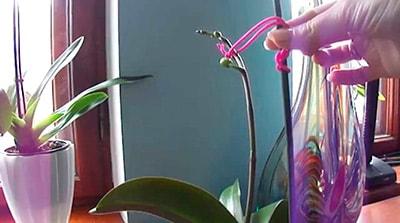 Опора для орхидей