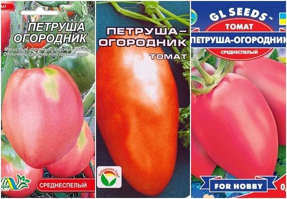 Фото упаковок семян