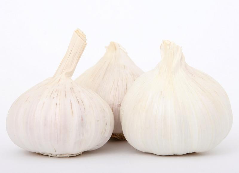 Фото луковиц чеснока