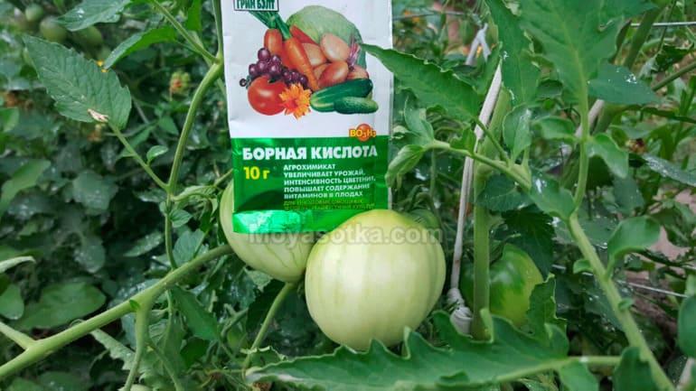 Борная кислота влияние на помидоры
