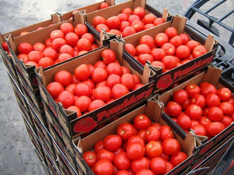 Фото хранения томатов