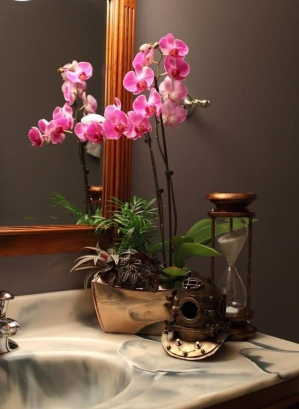 Орхидея фото 6
