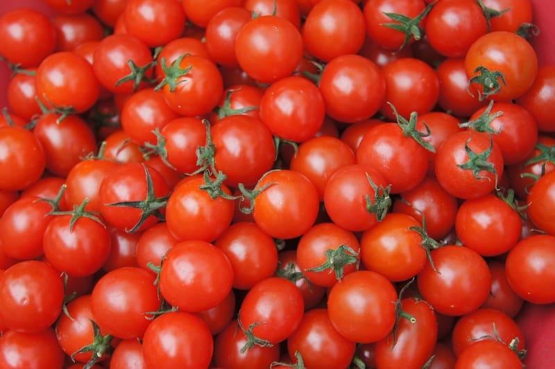 Фото плодов помидоров