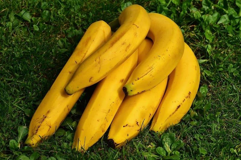 Фото бананов