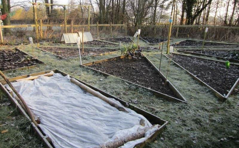 Фото огорода в марте