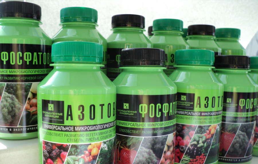 Фото Фосфобактерина и Азотобактерина