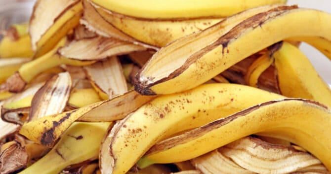 Фото банановой кожуры