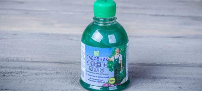 Фото мыла в бутылочке