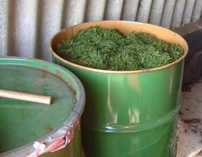 Фото удобрения из травы