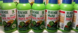 Фото зеленого мыла_главная