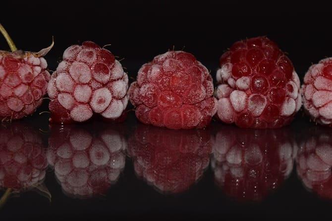 Фото морозовых ягод малины
