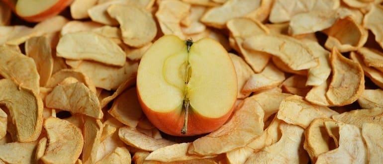 Фото сушки яблок_главная