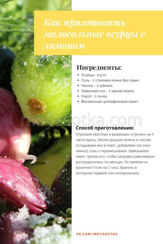 Фото огурцов с лимоном