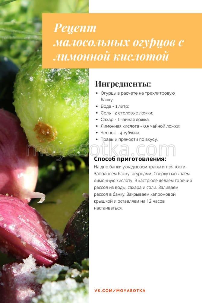 Фото огурцов с лимонной кислотой
