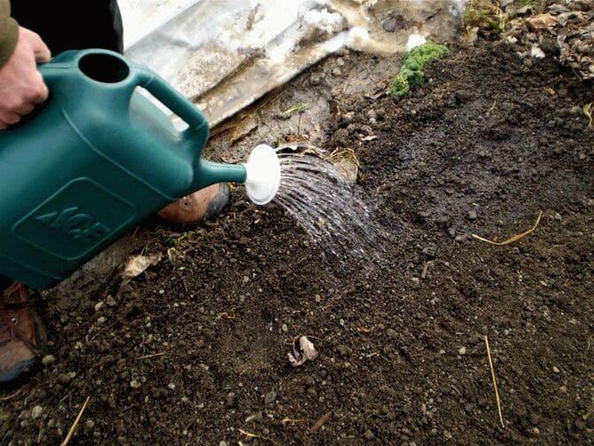 Фото обработки почвы
