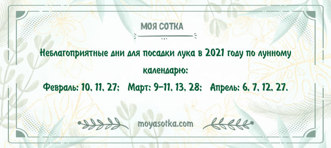 Неблагоприятные дни для посева лука в 2021 году по лунному календарю