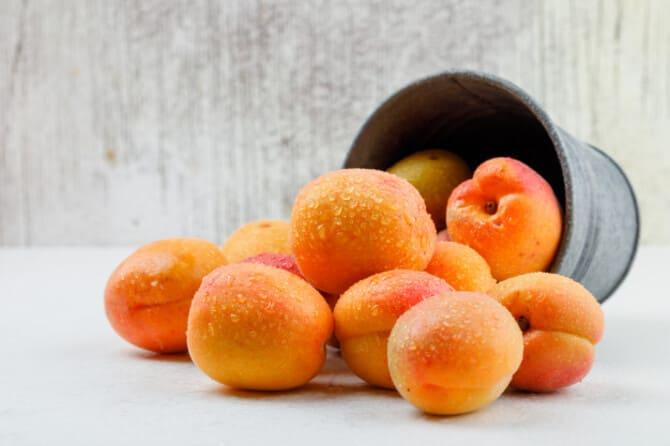 Фото абрикосов