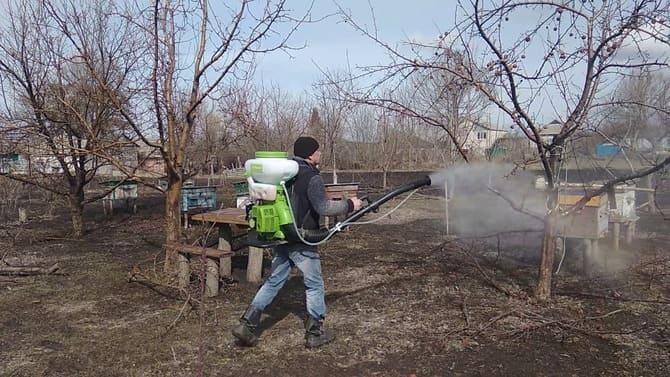 Фото обработки яблонь