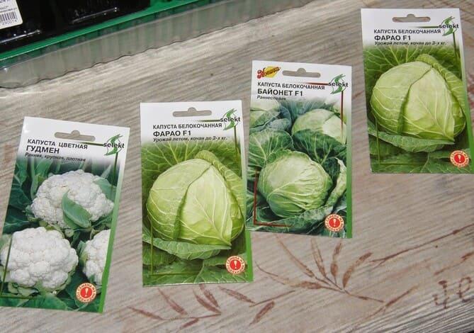 Фото пакетиков с семенами