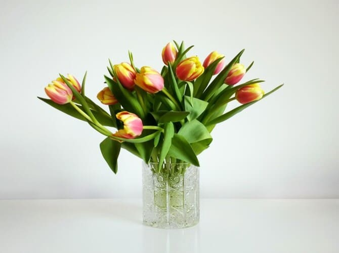Фото тюльпанов в вазе