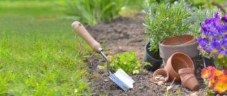 Фото садовых работ_главная