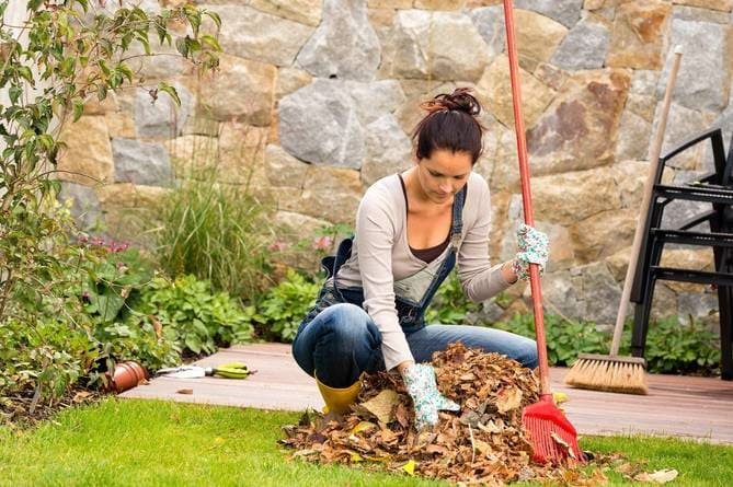 Фото уборки в саду