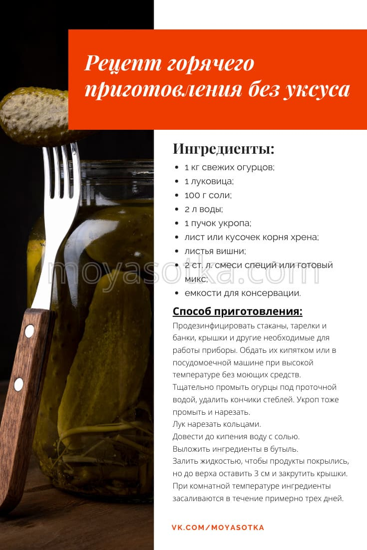 Фото горячего рецепта