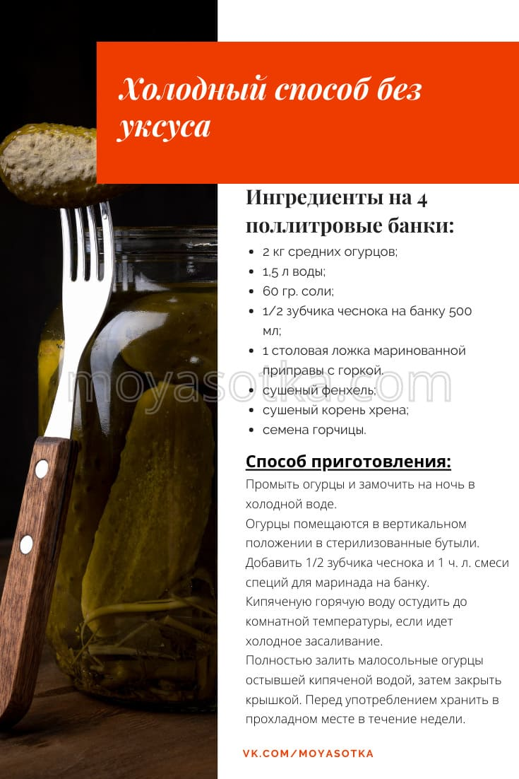 Фото холодного рецепта