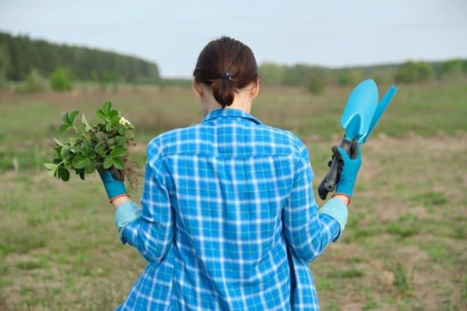 Фото женщины с клубникой в руках