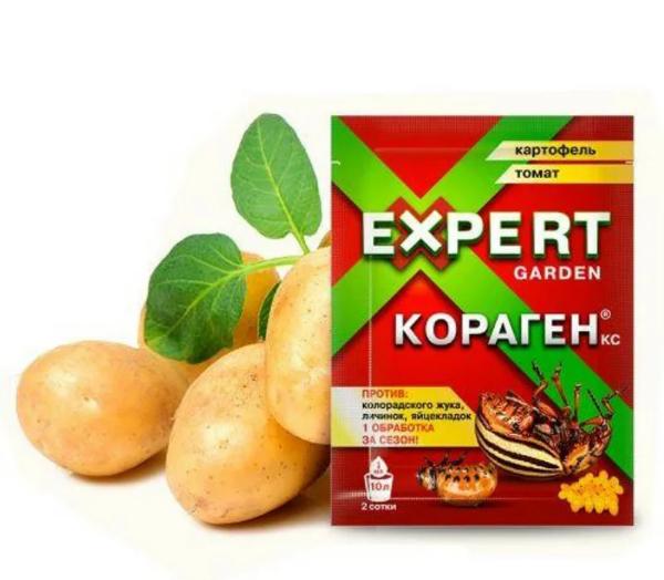 Как и чем опрыскивать картофель от колорадского жука