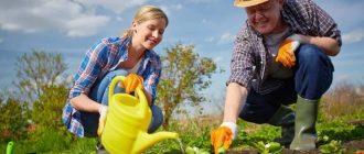 Посадочный календарь на 2021 года садоводов и огородников