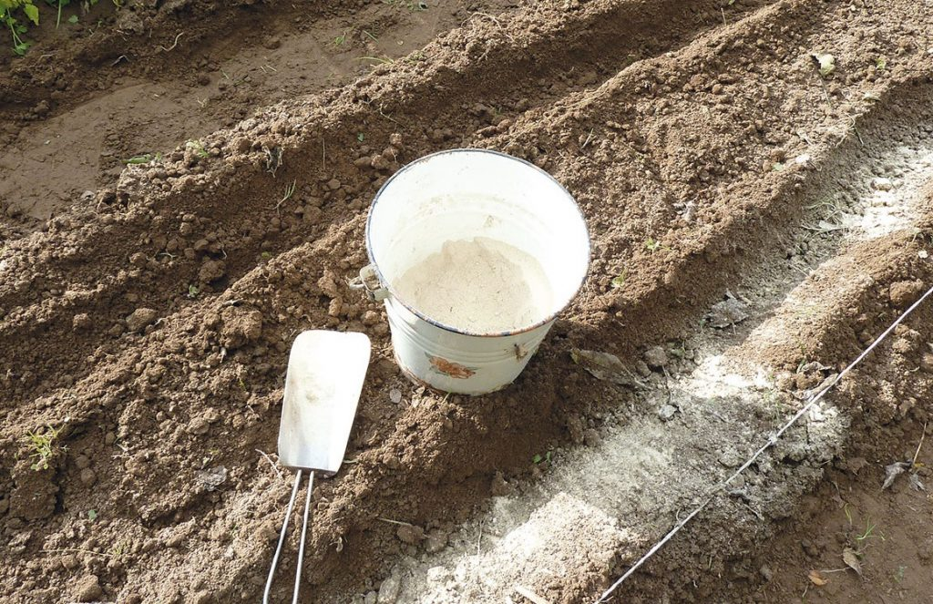 Известкование почвы на даче
